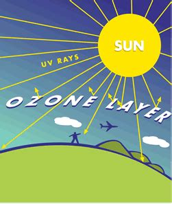 What is ozone layer depletion in Hindi - scienceanswerscom